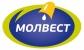 Работа в Молвест