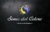 Работа в Senso del Colore