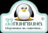 Работа в Демичев П. В. (33 Пингвина)