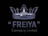 Работа в Freiya