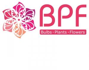Работа в BPF - Bulbs, Plants, Flowers