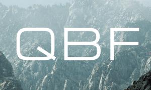 Работа в QBF III portfolio management