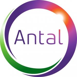 Работа в Antal Russia
