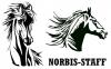 Работа в Норбис-Стафф