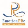 Работа в EmotionPRo