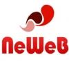 Работа в NeWeb