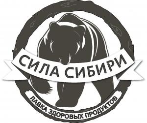 Работа в Сила Сибири