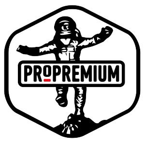 Работа в ПроПремиум