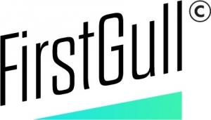 Работа в First Gull