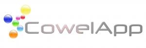 Работа в Cowel App
