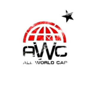 Работа в All World Cars