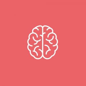 Работа в Double Brain