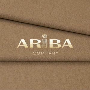 Работа в АРИБА-СПб