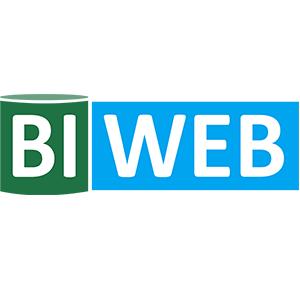 Работа в BIWEB | Бизнес – аналитика