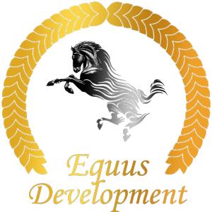 Работа в Equus Development