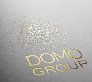 Группа компаний DOMOGROUP