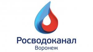 Вакансия в РВК-Воронеж в Москве