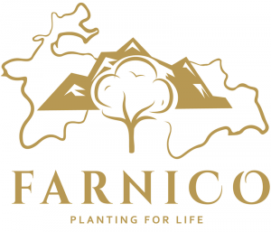Farnico International
