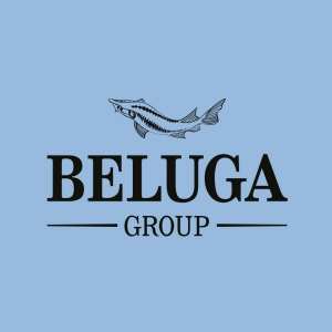 Работа в BELUGA GROUP