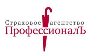 """Работа в СА """"ПрофессионалЪ"""""""