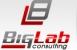 Работа в BigLab Consulting