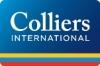Работа в Colliers International