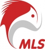 Работа в MLS IT Systems