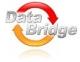 Работа в Databridge