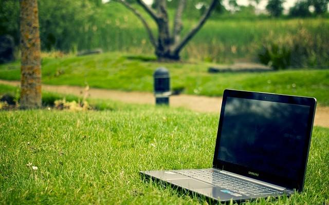 Что такое онлайн-стажировка
